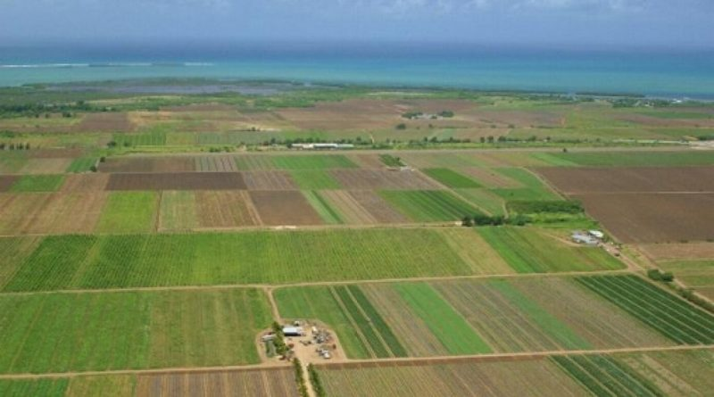 Lugoj Expres Intabulări gratuite pentru deținătorii de terenuri agricole din Lugoj terenuri agricole proprietarii de terenuri program național primăria lugoj intabulare finanțare carte funciară Cadastru gratuit Biroul agricol ANCPI