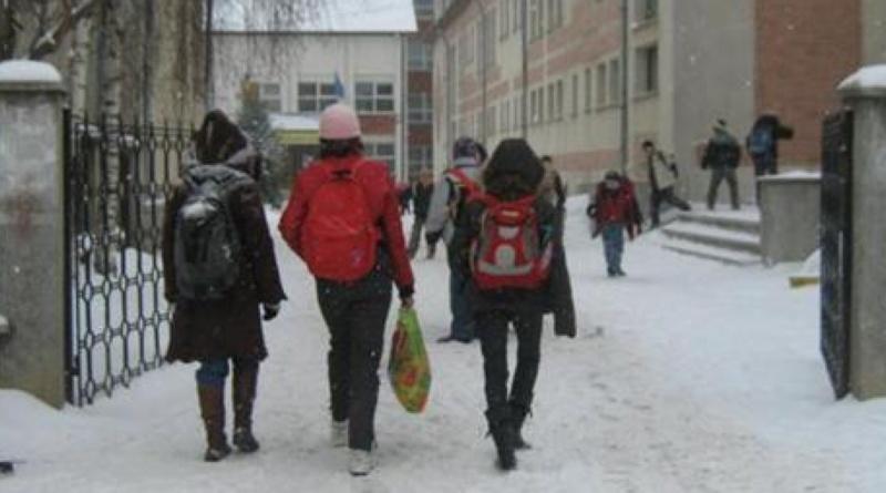 Lugoj Expres Toate școlile sunt închise vineri, din cauza gripei unități de învățământ suspendarea cursurilor școli ordin ministrul educației Ministerul Educației