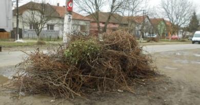 Lugoj Expres La Lugoj începe curățenia de primăvară ridicarea deșeurilor Lugojul Român Lugojul German Lugoj curățenia de primăvară colectarea deșeurilor de echipamente electrice