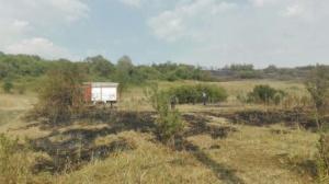 Lugoj Expres 25 de gospodării în pericol! Focul a pârjolit 40 de hectare de vegetație, în apropiere de Lugoj (FOTO) pompierii Lugoj ISU Timiș intervenție dificilă incendiu vegetație incendiu gospodării în pericol Bara   Lugoj Expres 25 de gospodării în pericol! Focul a pârjolit 40 de hectare de vegetație, în apropiere de Lugoj (FOTO) pompierii Lugoj ISU Timiș intervenție dificilă incendiu vegetație incendiu gospodării în pericol Bara   Lugoj Expres 25 de gospodării în pericol! Focul a pârjolit 40 de hectare de vegetație, în apropiere de Lugoj (FOTO) pompierii Lugoj ISU Timiș intervenție dificilă incendiu vegetație incendiu gospodării în pericol Bara   Lugoj Expres 25 de gospodării în pericol! Focul a pârjolit 40 de hectare de vegetație, în apropiere de Lugoj (FOTO) pompierii Lugoj ISU Timiș intervenție dificilă incendiu vegetație incendiu gospodării în pericol Bara