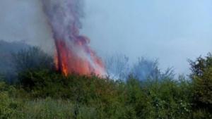 Lugoj Expres 25 de gospodării în pericol! Focul a pârjolit 40 de hectare de vegetație, în apropiere de Lugoj (FOTO) pompierii Lugoj ISU Timiș intervenție dificilă incendiu vegetație incendiu gospodării în pericol Bara   Lugoj Expres 25 de gospodării în pericol! Focul a pârjolit 40 de hectare de vegetație, în apropiere de Lugoj (FOTO) pompierii Lugoj ISU Timiș intervenție dificilă incendiu vegetație incendiu gospodării în pericol Bara   Lugoj Expres 25 de gospodării în pericol! Focul a pârjolit 40 de hectare de vegetație, în apropiere de Lugoj (FOTO) pompierii Lugoj ISU Timiș intervenție dificilă incendiu vegetație incendiu gospodării în pericol Bara   Lugoj Expres 25 de gospodării în pericol! Focul a pârjolit 40 de hectare de vegetație, în apropiere de Lugoj (FOTO) pompierii Lugoj ISU Timiș intervenție dificilă incendiu vegetație incendiu gospodării în pericol Bara   Lugoj Expres 25 de gospodării în pericol! Focul a pârjolit 40 de hectare de vegetație, în apropiere de Lugoj (FOTO) pompierii Lugoj ISU Timiș intervenție dificilă incendiu vegetație incendiu gospodării în pericol Bara   Lugoj Expres 25 de gospodării în pericol! Focul a pârjolit 40 de hectare de vegetație, în apropiere de Lugoj (FOTO) pompierii Lugoj ISU Timiș intervenție dificilă incendiu vegetație incendiu gospodării în pericol Bara   Lugoj Expres 25 de gospodării în pericol! Focul a pârjolit 40 de hectare de vegetație, în apropiere de Lugoj (FOTO) pompierii Lugoj ISU Timiș intervenție dificilă incendiu vegetație incendiu gospodării în pericol Bara
