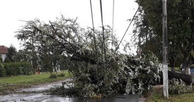 Lugoj Expres Lugojul, devastat de furtună. Vijelia a făcut prăpăd în 25 de localități din Timiș vijelie urgență prăpăd Lugojul devastat ISU Timiș furtună fenomene meteo periculoase fără curent echipe de salvare drumuri blocate