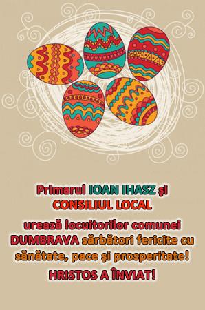 Felicitare Primaria si Consiliul local Dumbrava
