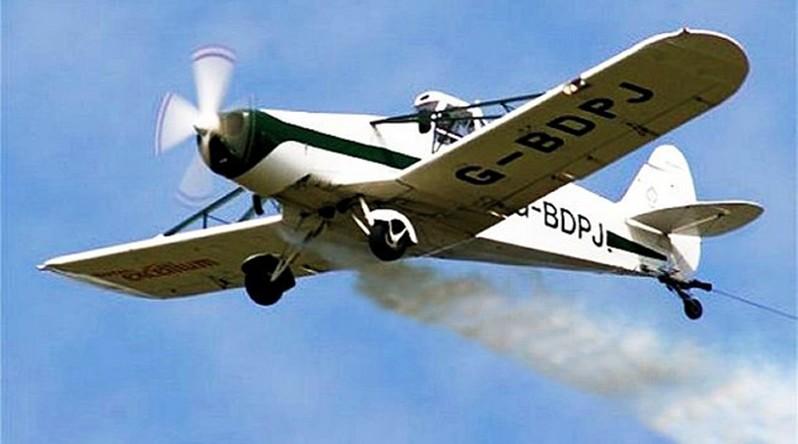 Lugoj Expres Acțiune de dezinsecție aviochimică și la Făget țânțari Făget dezinsecție aviochmică crescătorii de albine albine