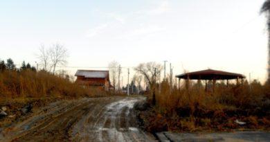 Lugoj Expres Primăria Lugoj inventariază terenurile care pot fi atribuite gratuit tinerilor. A identificat 29 de parcele tineri terenuri gratuite terenuri proiect primăria lugoj parcele inventariere hotărâre folosință gratuită casă atribuite gratuit