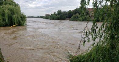 Lugoj Expres Pompierii au evacuat 12 copii, 10 adulți și peste 100 de animale din calea apelor, la Lugoj salvat râul Timiș pompieri Pohalma Lugoj inundații dig copii evacuați căine salvat breșă animale adulți evacuați