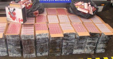 Lugoj Expres Captură impresionantă de țigări de contrabandă, la Margina tineri Maramureș țigări de contrabandă Margina captură impresionantă