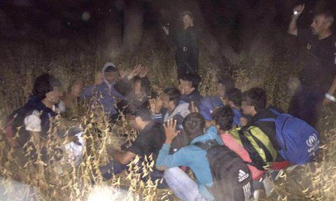 Lugoj Expres Grup de migranți, depistat lângă Lugoj transfugi migranți Lugoj