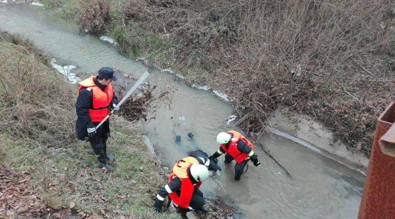 Lugoj Expres Descoperire macabră, la Hodoș Hodoș descoperire macabră bărbat înecat