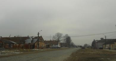 Lugoj Expres Finanțare europeană de peste 5,5 milioane de euro pentru zonele defavorizate din Lugoj strategie Programul Operaţional Capital Uman 2014 – 2020 primăria lugoj GAL finanțare europeana dezvoltare locală