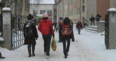 Lugoj Expres Școlile și grădinițele din Timiș, rămân închise luni și marți din cauza gerului Timiș școli rămân închise grădinițe ger autoritățile din Timiș