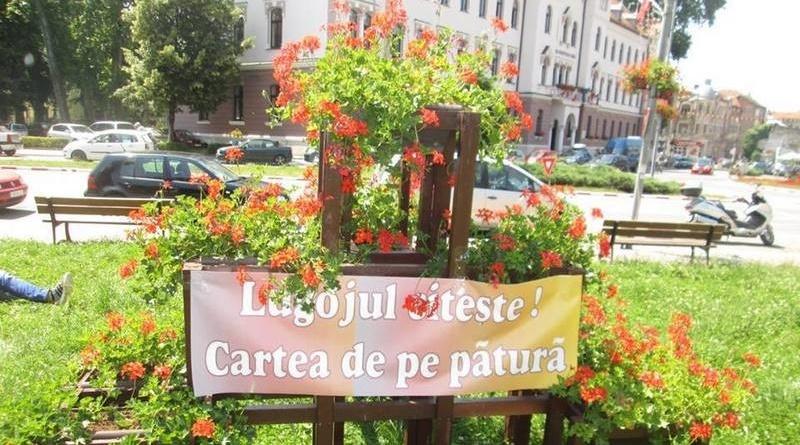 Lugoj Expres Lugojul citește! Cartea de pe pătură scriitorii lugojeni promovarea cărții Lugojul citește eveniment cultural cartea de pe pătură