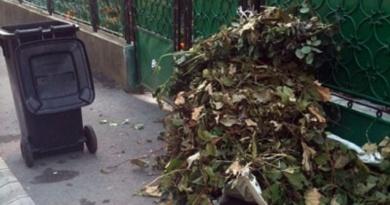 Lugoj Expres Salprest adună deșeurile vegetale din Lugoj veste bună Salprest gunoi vegetal deșeurile vegetale din Lugoj deșeuri