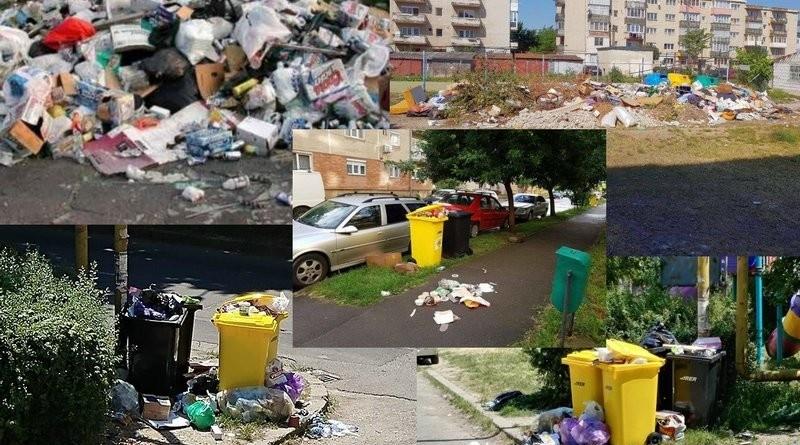 Lugoj Expres Mizeria din Lugoj, în atenția Gărzii de Mediu sesizare salubrizare mizeria din Lugoj gunoi Garda de Mediu deșeuri consilier lugojean colectarea deșeurilor