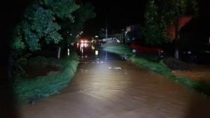 Lugoj Expres inundatii Faget 2