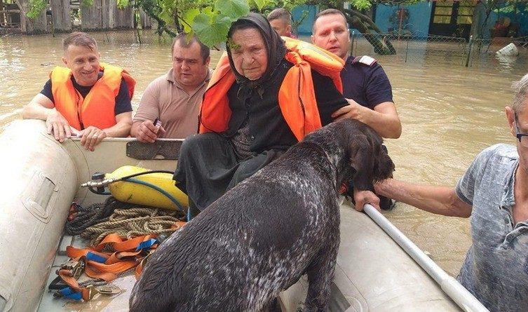 """Lugoj Expres Bătrână salvată din calea apelor: """"Luați maică și câinele, ca și el e suflet!"""" viitură salvată pompieri Ohaba Lungă ISU Timiș inundații căine salvat câine bătrână salvată bătrână apă"""