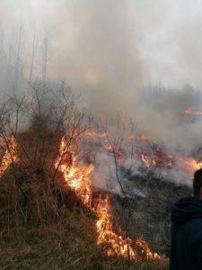 Lugoj Expres Incendiu de pășune împădurită, în apropiere de Tomești. Arde vegetația pe 25 de hectare voluntari vegetație Tomești pompieri pășune împădurită pădure ISU Timiș incendiu focar arderi necontrolate